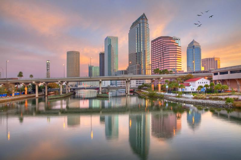 Tampa Bay Florida Medical Malpractice Insurance Market Diederich Healthcare Diederich